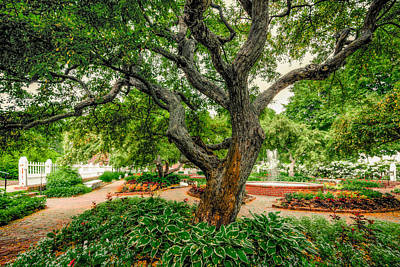 Photograph - Prescott Park Formal Gardens by Robert Clifford