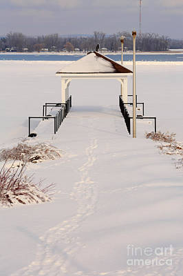 Winter Storm Photograph - Presquile Provincial Park In Winter by Louise Heusinkveld