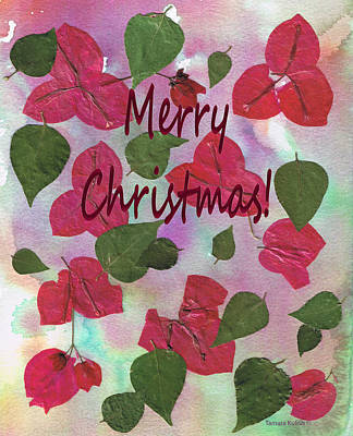 Christmas Photograph - Pressed Flower Pictures34-1 by Tamara Kulish