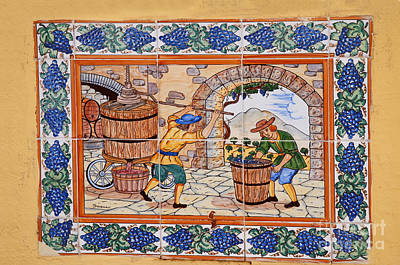 Photograph - Pressing The Grapes by Brenda Kean