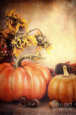Pretty Autumn Display Art Print by Stephanie Frey