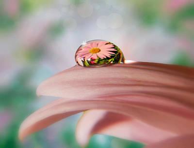 Pretty Flower Drop Art Print