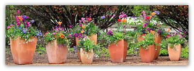 Pretty Flowers In A Row Original by Rosanne Jordan