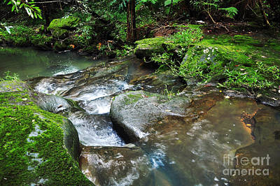 Pretty Green Creek Print by Kaye Menner