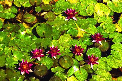 Digital Art - Pretty In Fuchsia - Waterlily Pad Impression by Georgia Mizuleva