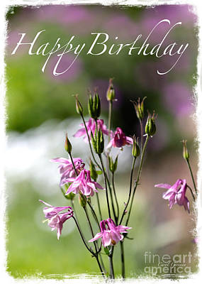 Photograph - Pretty In Pink Birthday Card by Carol Groenen