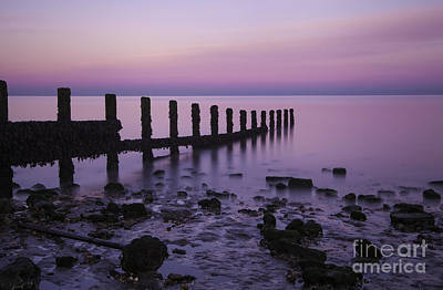 Sheppey Photograph - Pretty In Pink by Nigel Jones