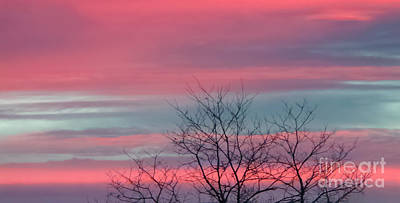 Photograph - Pretty In Pink Sunrise by Charlie Cliques
