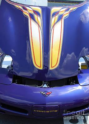 Photograph - Pretty In Purple by Mark Spearman