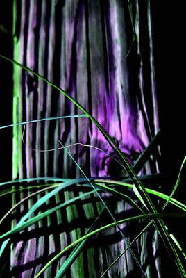 Avantgarde Photograph - Pretty Natural by Susanne Van Hulst