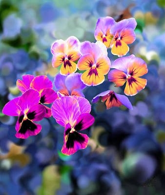 Pretty Pansies 3 Art Print by Bruce Nutting
