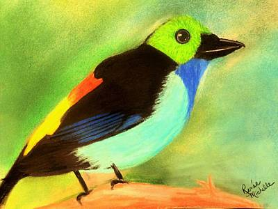Pretty Paradise Tanager Art Print