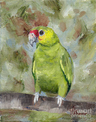 Painting - Pretty Parrot IIi by Brenda Thour