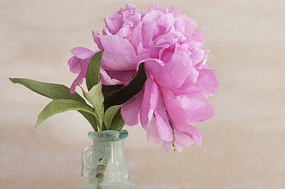 Photograph - Pretty Pink Peony by Rich Franco