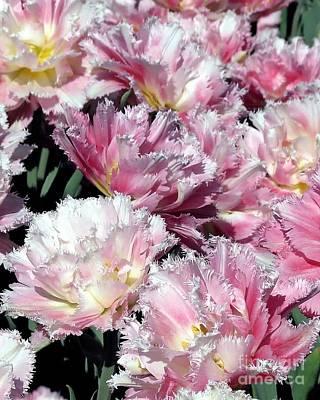 Photograph - Pretty Pink Petal by Donna Cavanaugh