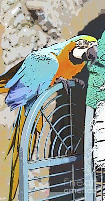Digital Art - Pretty Polly by Diane Macdonald