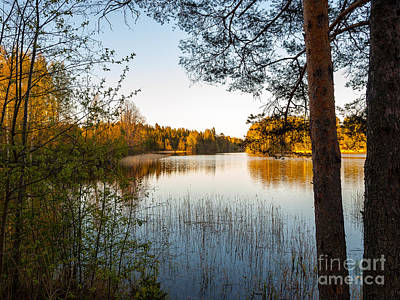 Pretty Spring Evening At The Lake Art Print