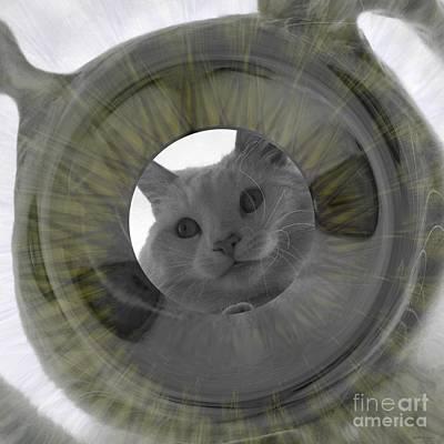 Veterinary Digital Art - Pretty Sure This Is Mine  by Elizabeth McTaggart