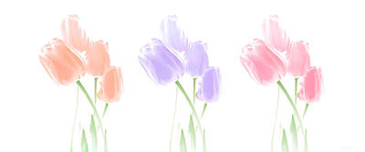 Photograph - Pretty Tulips All In A Row Triptych by Jennie Marie Schell