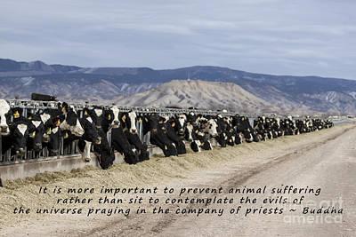 Thomas Kinkade Royalty Free Images - Prevent Animal Suffering Royalty-Free Image by Janice Pariza