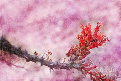 Prickly Beauty Art Print by Erika Weber