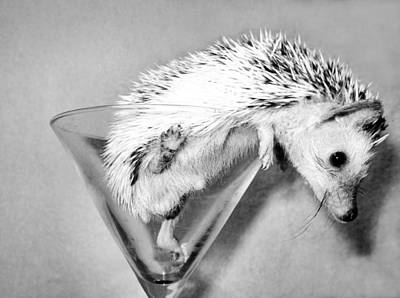Martini Royalty-Free and Rights-Managed Images - Prickly Martini by Art Dingo