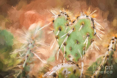 Photograph - Prickly Pear Heart by Marianne Jensen