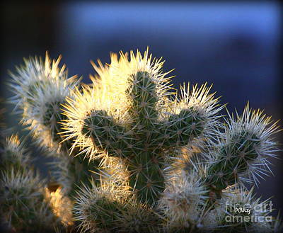 Prickly Sunset Art Print