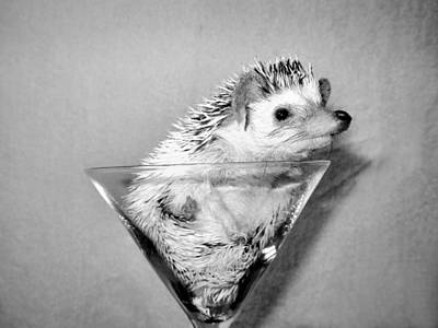 Martini Royalty-Free and Rights-Managed Images - Prickly Toasting by Art Dingo