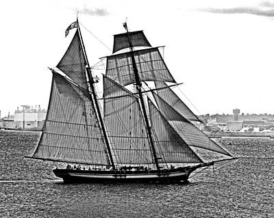 Photograph - Pride Of Baltimore II Black And White by Bill Swartwout