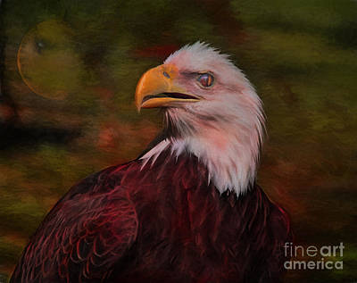 Strong America Photograph - Pride Strength And Courage by Deborah Benoit