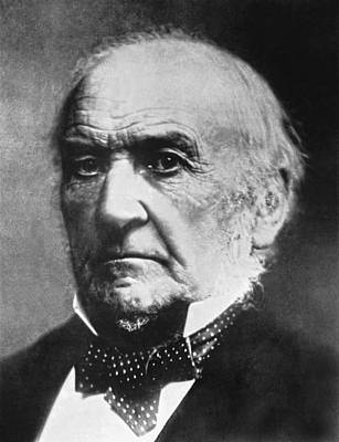 Gray Hair Photograph - Prime Minister Gladstone by Underwood Archives