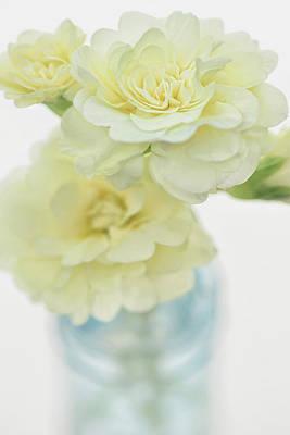Primroses Photograph - Primrose Vase by Cora Niele