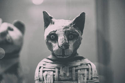 Egyptian Mummy Photograph - Prince Of Purrsia.. by A Rey