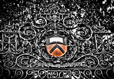 Photograph - Princeton University Shield by Colleen Kammerer