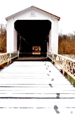 Photograph - Prints To The Bridge by Emily Stauring