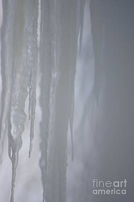 Photograph - Prison Of Ice by Lorelle Gromus