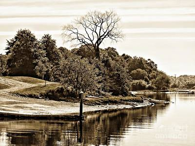 Photograph - Pristine Island by Marcia Lee Jones