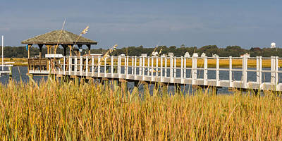 Photograph - Private Dock by Ed Gleichman