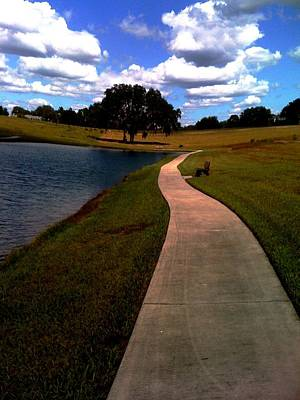 Photograph - Private Park,fl. by Robin Lewis