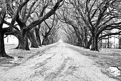 Pellegrin Photograph - Private Road by Scott Pellegrin