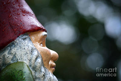 Profile Of A Garden Gnome Print by Amy Cicconi