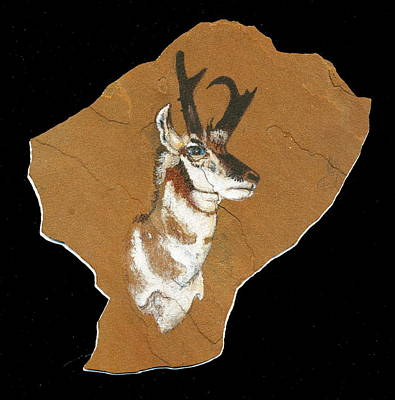 Painting - Pronghorn  Pictograph by Dale Jackson