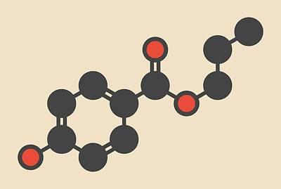 Propyl Paraben Preservative Molecule Art Print by Molekuul