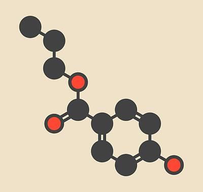Lotion Photograph - Propylparaben Preservative Molecule by Molekuul
