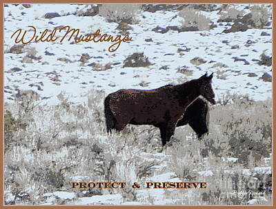 Photograph - Protect N Preserve Wild Mustangs by Bobbee Rickard