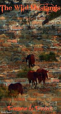 Photograph - Protect The Wild Mustangs  by Bobbee Rickard