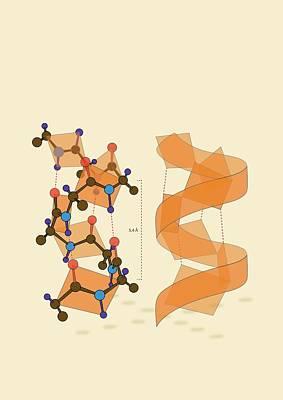 Protein Alpha Helix Structure Art Print