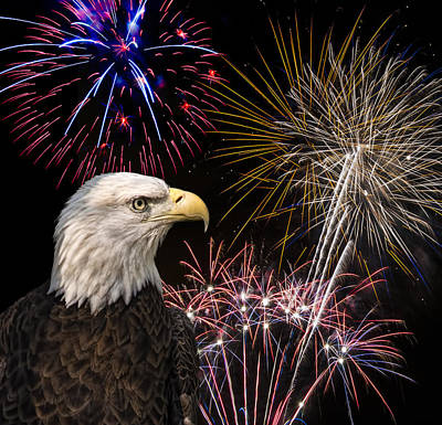 Skyrocket Photograph - Proud And Free 7 by Penny Lisowski