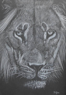 Proud Lion Art Print